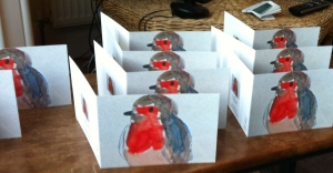 Robin £5 for pack of 8