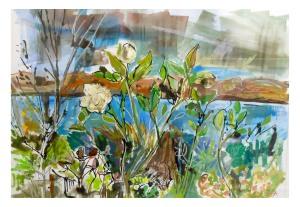 October Rose. Clare Arbuthnott
