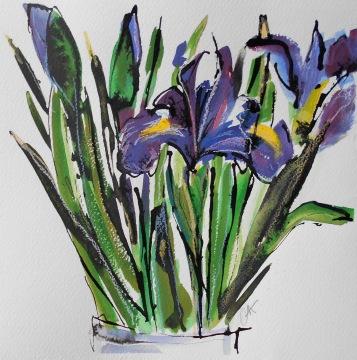 Iris (SOLD)
