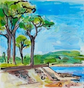 ca016-trees-on-cramond-promenade