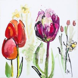 ca034-clare-arbuthnott-tulip