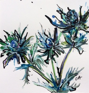 sea-holly-ca046