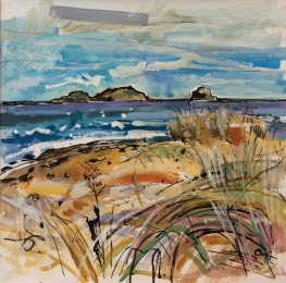 The Bass Rock from Yellowcraigs