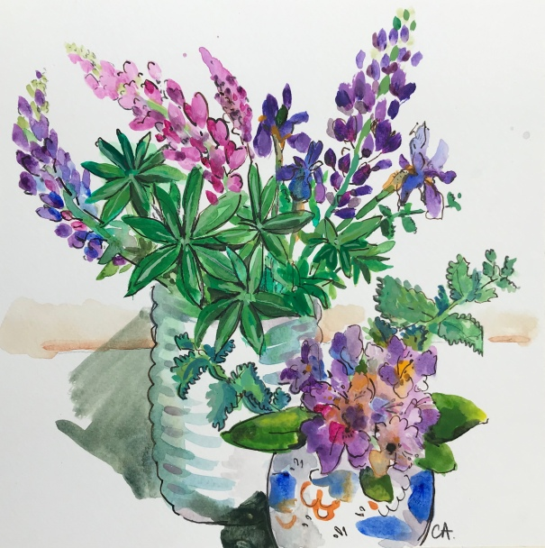 Small lupins